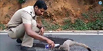 The police who gave water to the gentle ghee in thirst