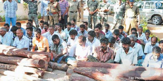 19 Tamils arrested for kidnapping of sheep in Kadapa near Thirupathi