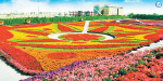 4.5 crore giant flower gardens with flowers in Dubai