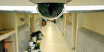 Surveillance Cameras at All schools : High Court's decision to the state deadline
