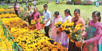 7 thousand pots of blooming flowers in ooty