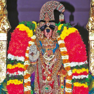 Day celebration in Srirangam: Nirrulumal in pearl couture decor