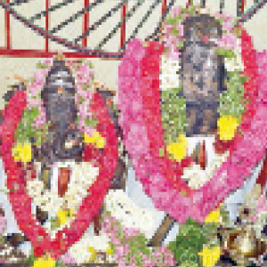 Kanthan Temple Celebration Festival: Devotees worship and pay for fruits