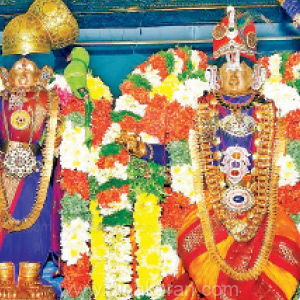 Annapoorna enthusiast in the Andal Temple for the masic mahasam: 50 kg ceremony