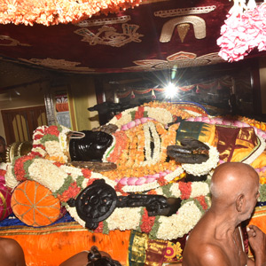 Will take place once in 40 years The initiation of the Adivatara Vaibhavam: Darshan of thousands of devotees