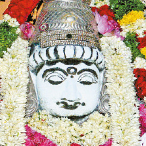 The Champika Saththi festival in Tirupurthur Thiruthilinathar temple is completed