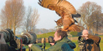 Hilarious moment enormous bird of prey launches itself from a roof and lands on birdwatcher's head