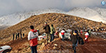 Air crash in Iran: the rescue team is actively searching
