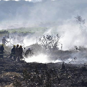 Fire in Bellandur Lake in Bengaluru: 5000 Soldiers fighting for fighting