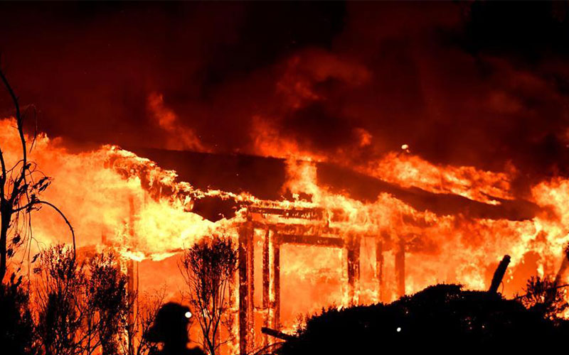 Historical forest fire in California: rise to 40 About 2,17,000 acres of land damage