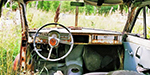 Junkyard of 1000 cars from bygone era found in a Swedish forest