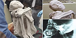 Mummified humanoid with elongated skull and 3 fingers found in cave