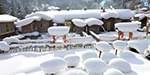 China's eye-catching photos of the white snow wax made from heavy snowfall