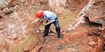 Chinese roadworkers unearth fossilised dinosaur eggs