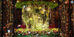 Flower Time Exhibition held at Brussels Town Hall, Belgium: Photos