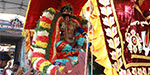 Mathavapperumal Temple Festival - special pictures