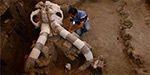 14000 years old mammoth skeleton found