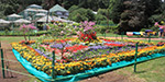 From today to 3 days at the Botanical Gardens is Ooty Flower Show