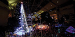 Christmas tree with 5 lakhs lights - people astonished