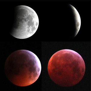 redmoon_lunar12