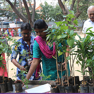 Safe Food Festival held at Stella Mary's College