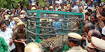 Leopard enter the village of Dharmapuri attacked 6 persons
