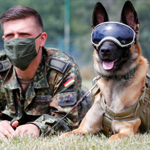 German army trains military dogs to detect corona virus in saliva