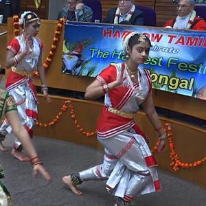 Pongal festival on behalf of Haro Tamil Community Association in London