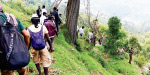 About 60 people took part in trekking training to welcome the Kodaikanal Summer Festival