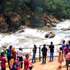 Piagara falls in the waterfall and the tourists are delighted