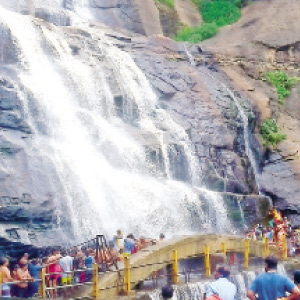 ... pleasant environment ... some water and heat in Courtallam waterfalls flow