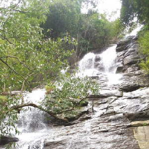 Several months later, tourists from Jagadgiri Waterfalls are happy to visit