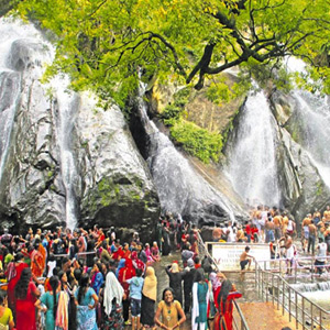 Pleasant environment in Courtallam: Ananda bathing in the waterfalls