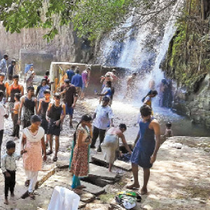 Wildlife survey work completed - Permission to take a bath at Agasthyar Falls: The pleasure of tourists