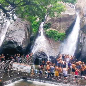 The persistent glue glue environment in Courtallam: tourists enthusiasm