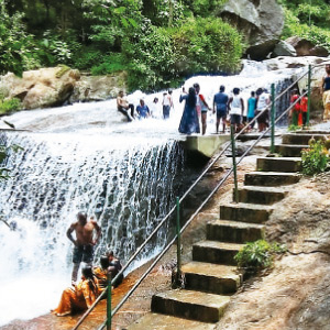Goa Courtallam opens after 51 days