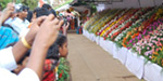 Ooty Flower Show at the Botanic Gardens Launches Today