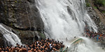 Waterfalls kurrala excitement clamor tourists