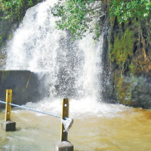 The southwest monsoon began with Papanasam dam water level 8 feet in the same day.