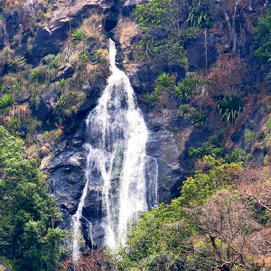 Kallatti falls in the waterfall and the tourists are delighted