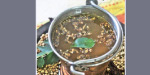 Soup curry leaves